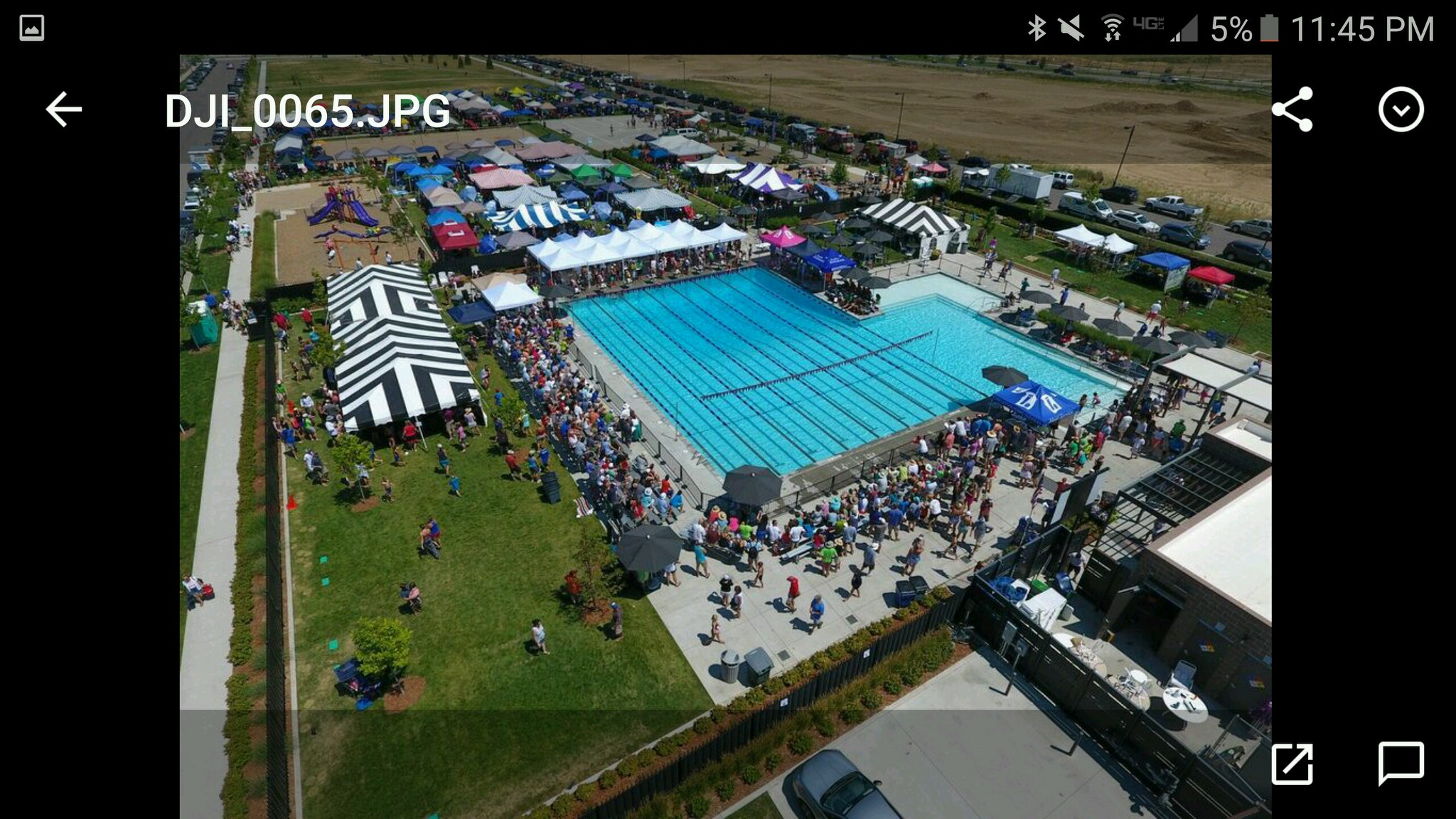 colorado summer swimming state meet